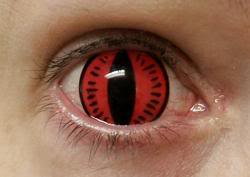 nine-tailed-fox-contacts